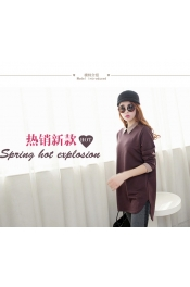 Korean Autumn casual Long Top
